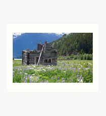 Abandoned cabin at Alice Arm Art Print