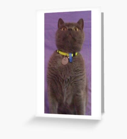 Can I Have It? Greeting Card
