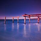 Hamelin Bay II by Paul Pichugin