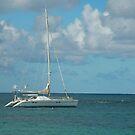 White Yacht by Rosalie Scanlon