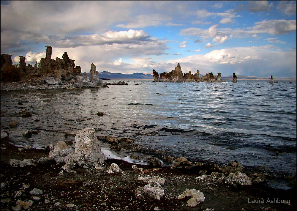 Colors of Mono Lake by Laura Ashburn
