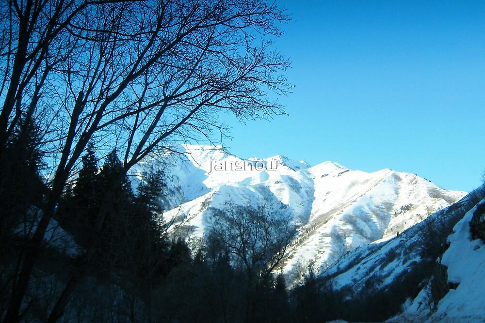 Vivian's View by jansnow
