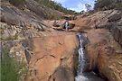 Spring Creek Falls by mspfoto