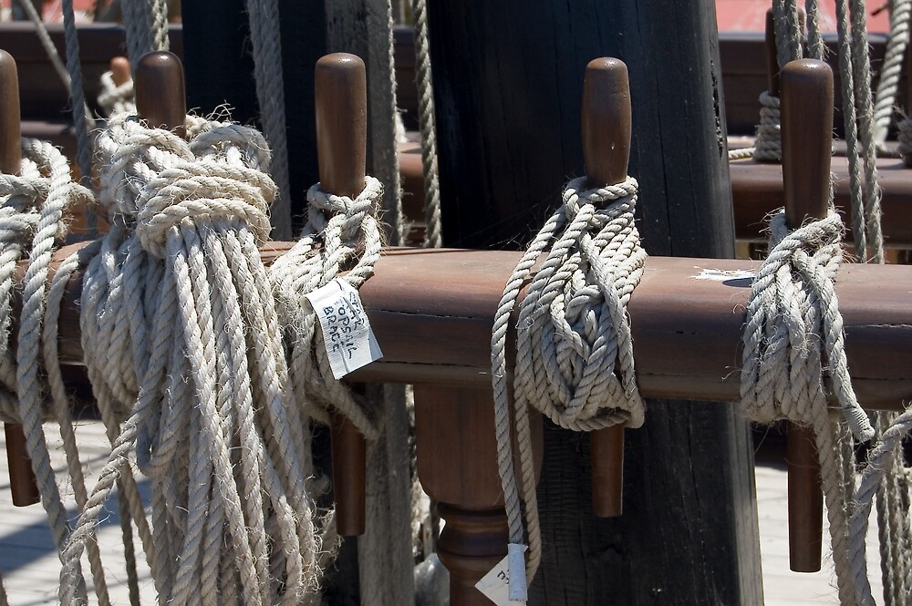 Nautical Ropes by Hayley Solich