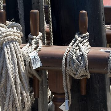 Nautical Ropes by WomenCan