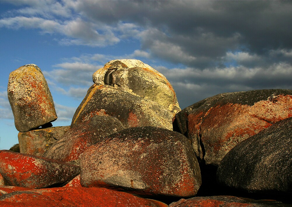 Lichen Covered Rocks by Ian Robertson