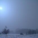 Crazy Cold Storm by velveteagle