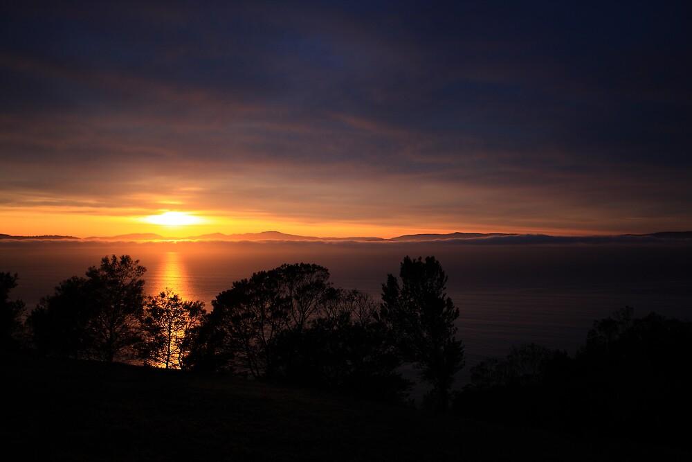 Sunrise, Frederick Henry Bay from Single Hill by David Jamrozik