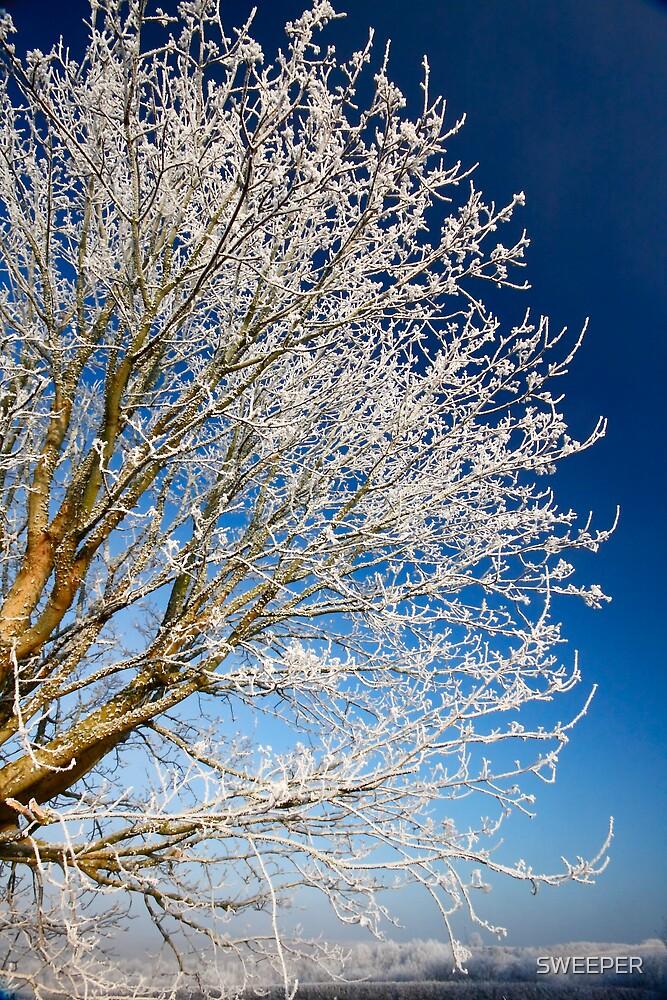 Stoke Frost 2 by SWEEPER