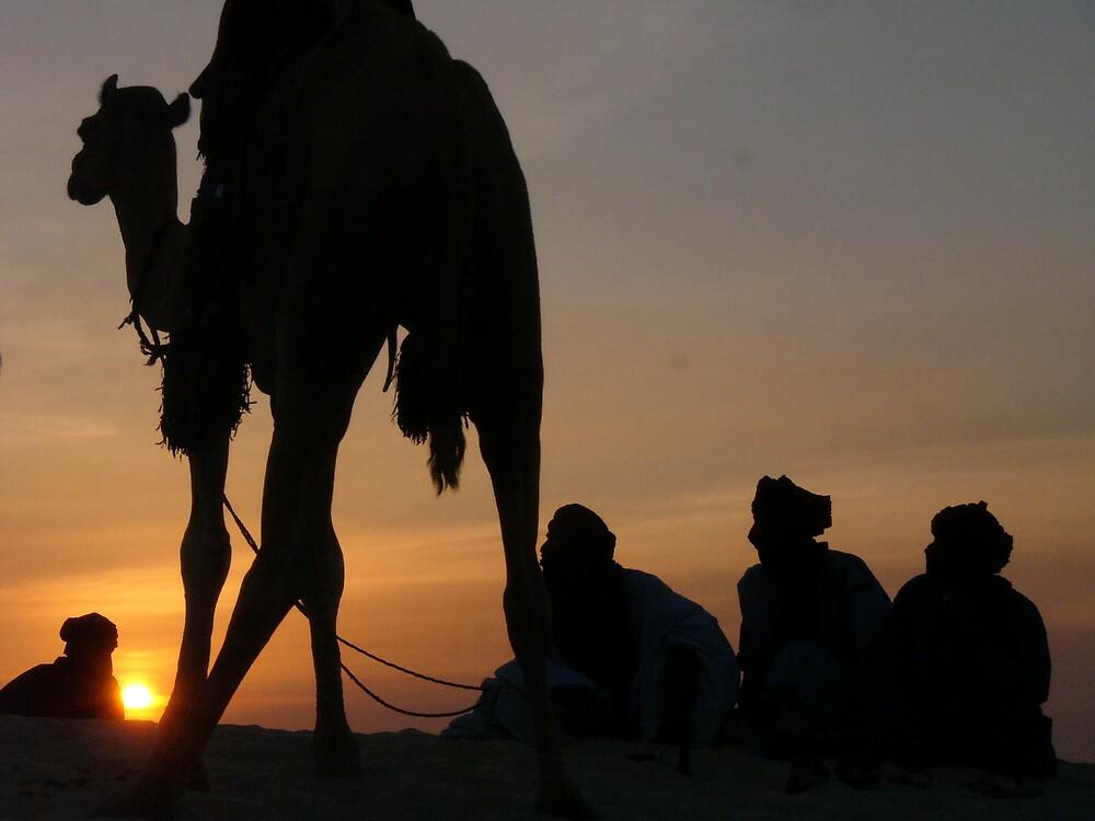 Camel at Sunset in the Sahara desert by rlnorton