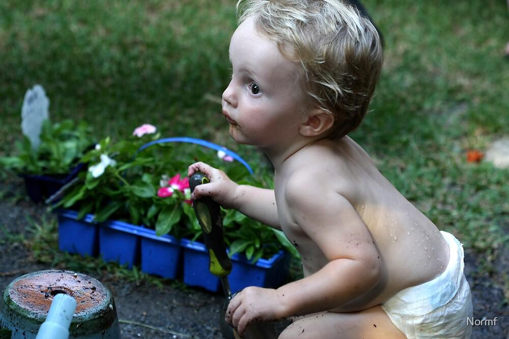 Little Gardener by Normf