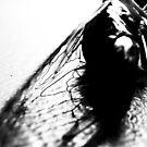 locust by slagseed