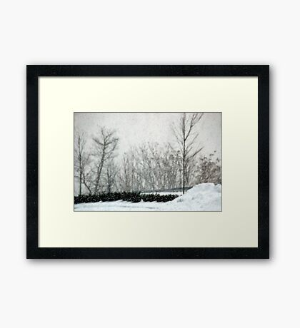 The Weight of Snow Framed Print
