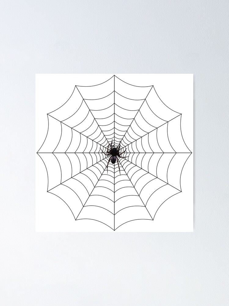 Alternate view of Spider web, spider, web, паутина, web, cobweb, net, tissue, spider's web, spinner, caterpillar Poster