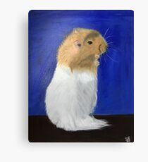 Piontek The Hamster Canvas Print