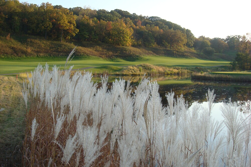 golfing in galena by cynthia  brown