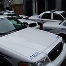 Police Blockade by Snoboardnlife