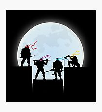 Lámina fotográfica Ninjas