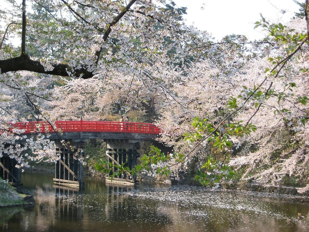 Sakura by profusemoose