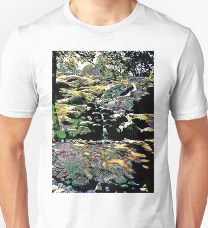 Finnish stream in Autumn T-Shirt