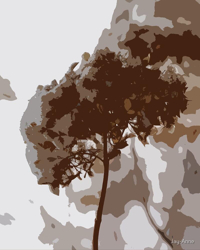 Winter's Flower by Jay-Anne