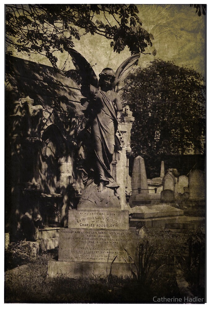 the tomb of charles adderley by Catherine Hadler