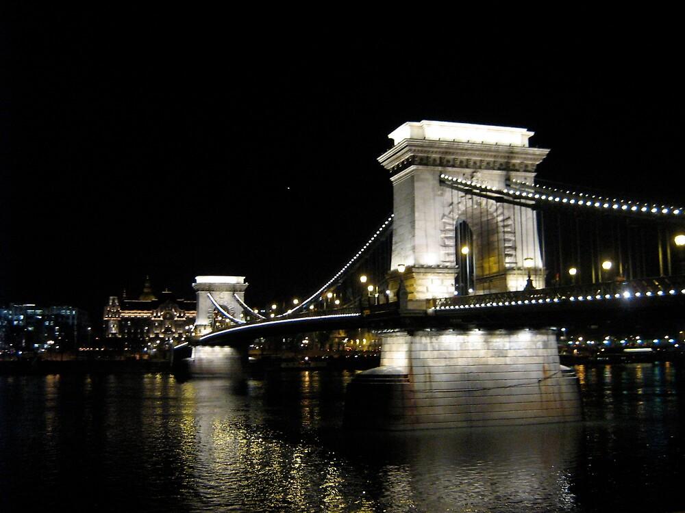 Chain Bridge by profusemoose