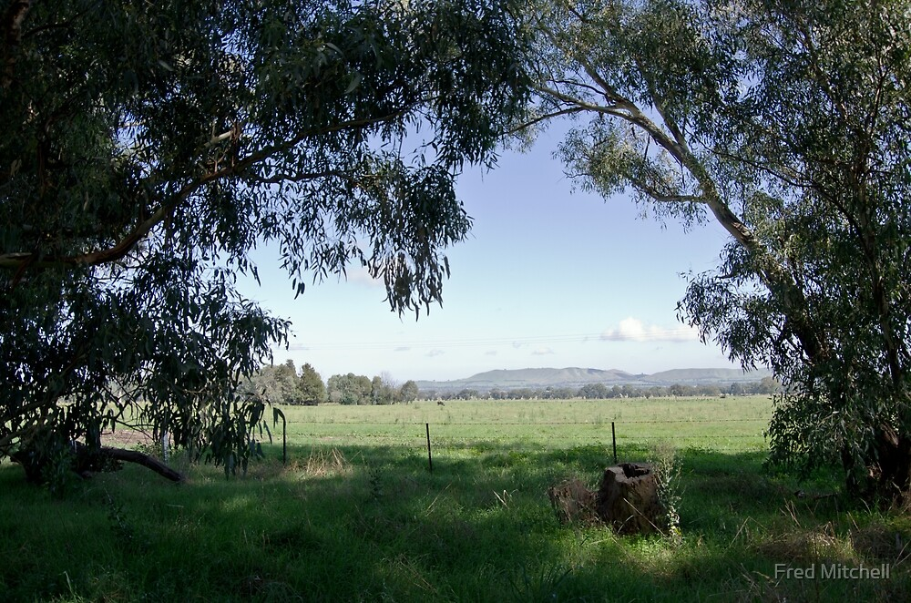 Hills of Murmungee Victoria 20110316 0429  by Fred Mitchell