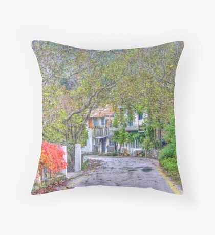 Quiet Lane Throw Pillow