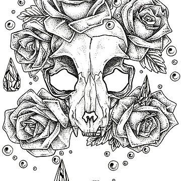 Skull cat by i-vomited-dream