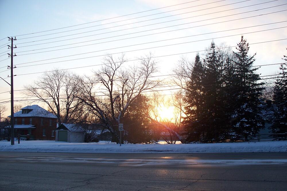 A Winter Wonderland by notculpable