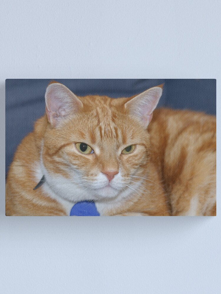 Alternate view of Angus Canvas Print