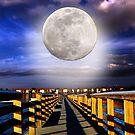 Full moon by LudaNayvelt