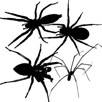 Spiders by Bazyartass