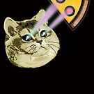 Fat Cat Shooting Eye Lasers for Pepperoni PIzza  by electrovista