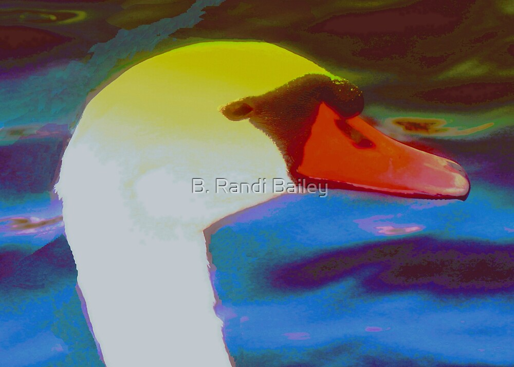 Swan in profile by ♥⊱ B. Randi Bailey