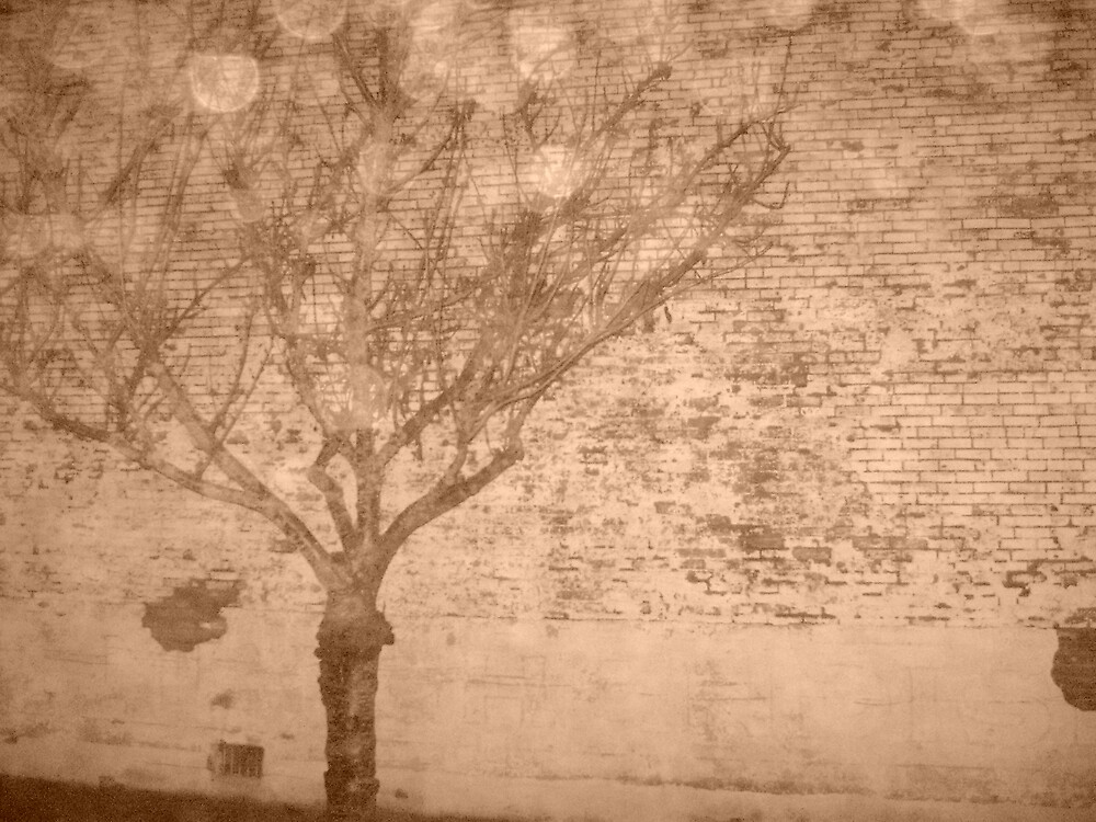 Sepia tree by Amateur19