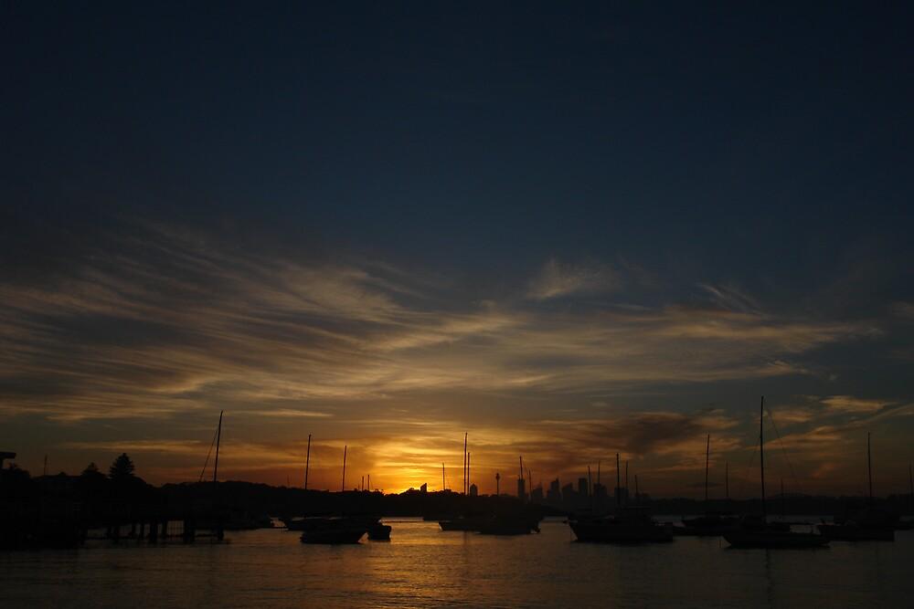 The Last Sunset of 2008 (2) by ellenjoanne
