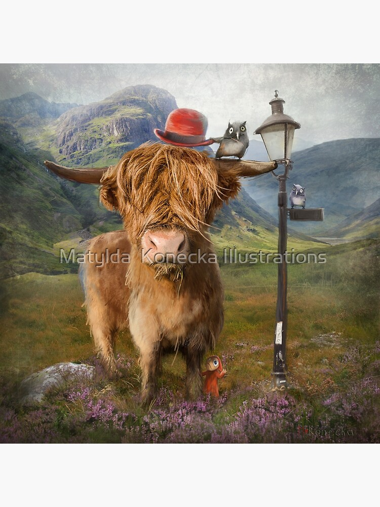 """Highland Cow"" by matylda"