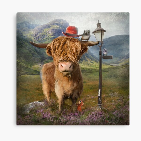 """Highland Cow"" Canvas Print"