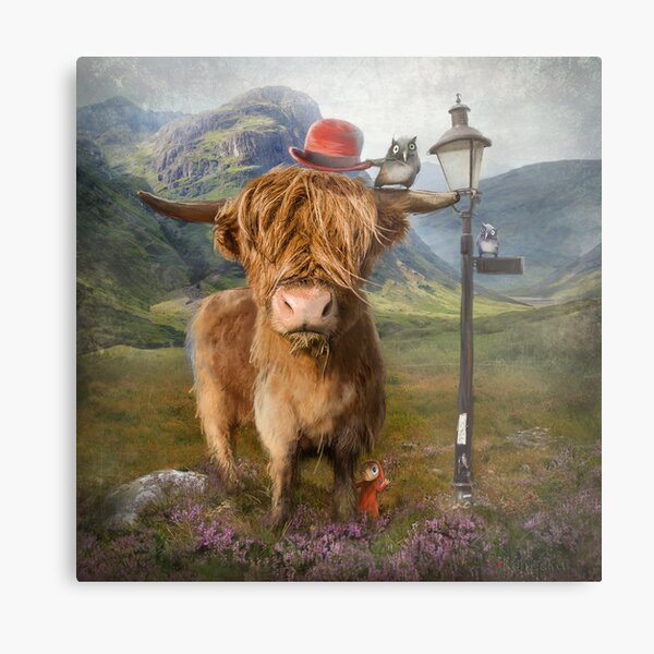 """Highland Cow"" Metal Print"