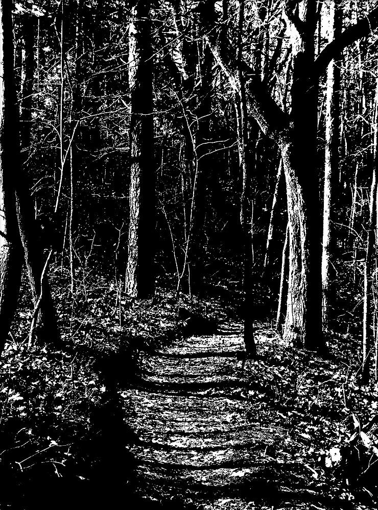 Trail Into The Dark Wood by Kendrick Sr. Shackleford