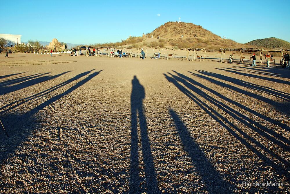 Long Shadows by Barbara Manis