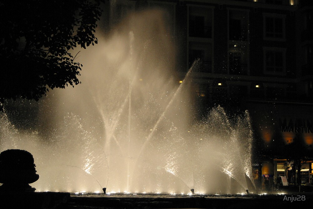 Water Show at night by Anju28