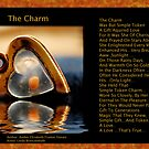 The Charm by Amber Elizabeth Fromm Donais