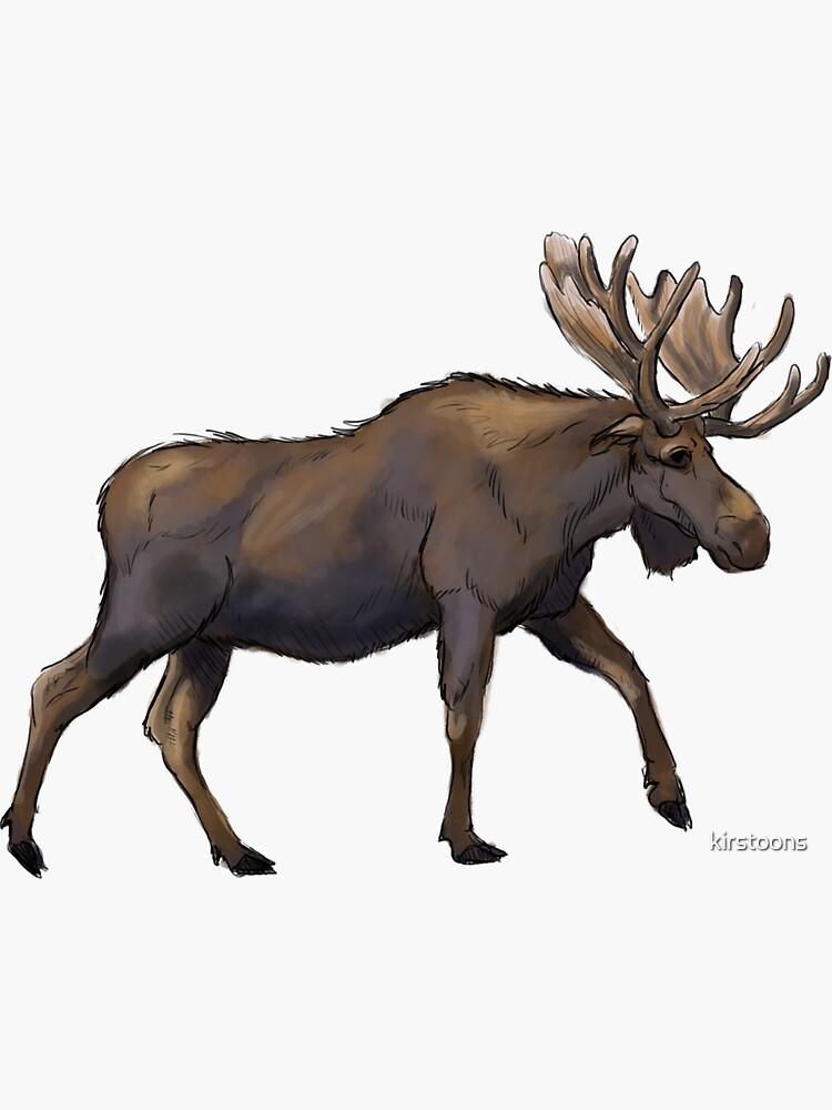 Moose by kirstoons