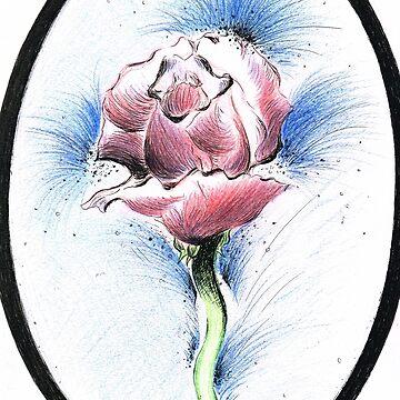 Precious Rose by white1970