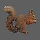 Red!  The World's Favourite Squirrel by Chris Geatch