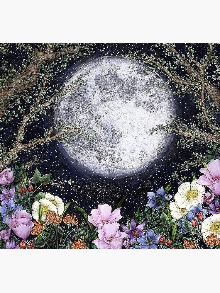 Midnight in the Garden II by ECMazur