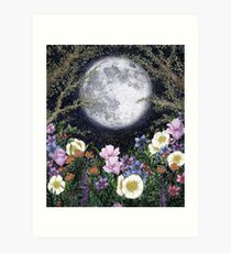 Midnight in the Garden II Art Print